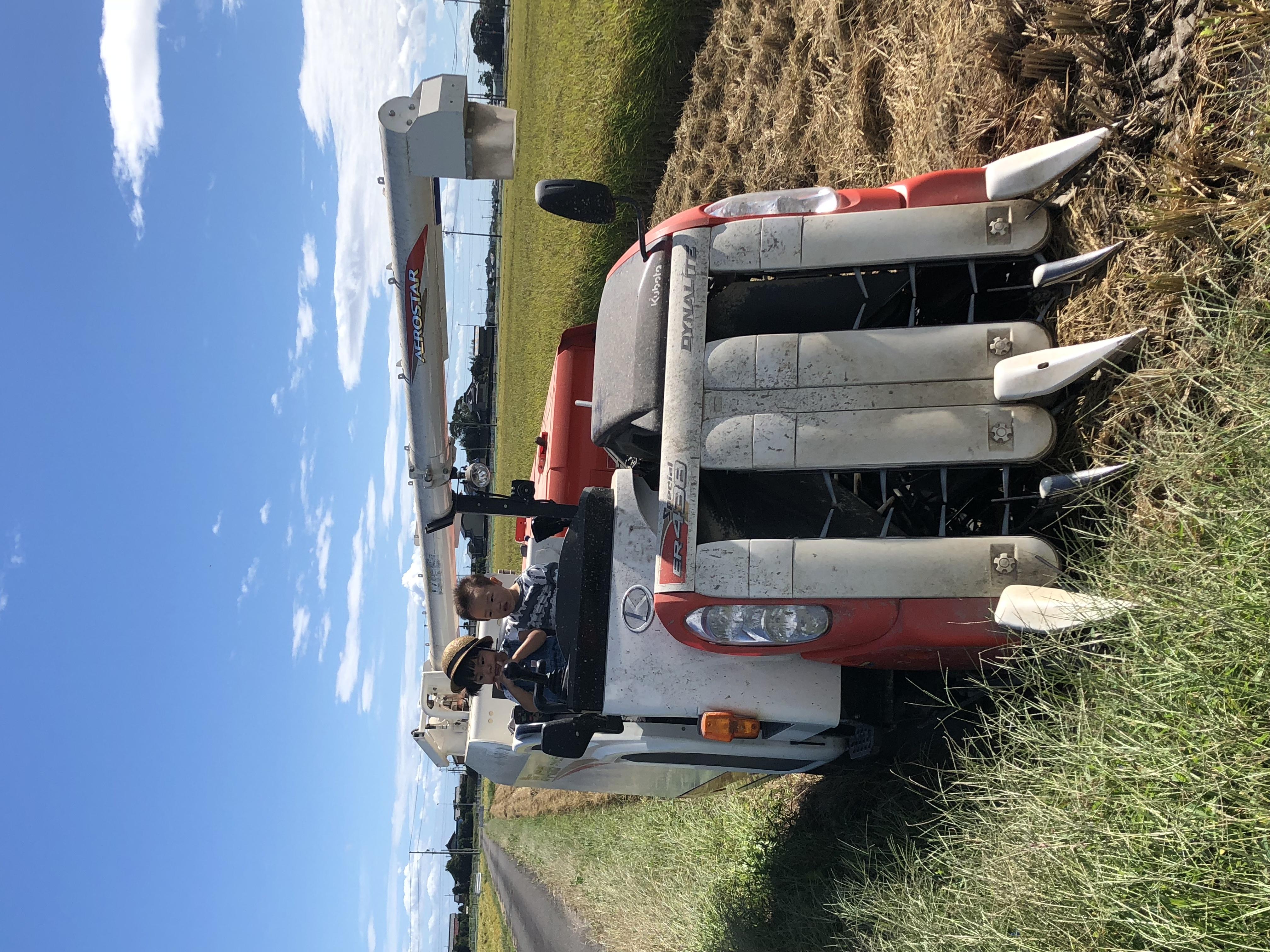 稲刈り体験 コンバイン